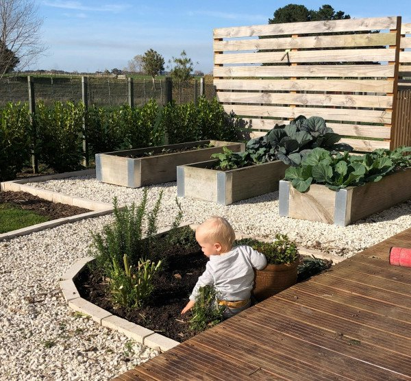 Baby playing in garden at Toni Horrell's lifestyle block